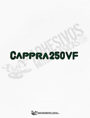 Adhesivos MONTESA Cappra 250 VF
