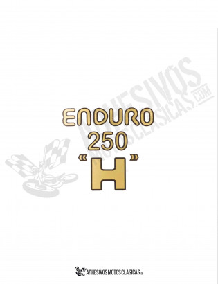 MONTESA Enduro 250 H Sticker
